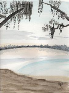 Florida Lagoon View