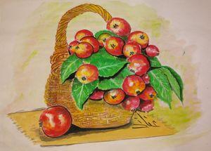 سلة الفاكهة