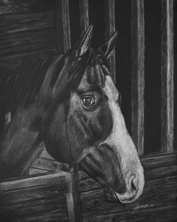 Stable Horse - Jennifer M. Gerke