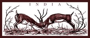 Indian Antelopes