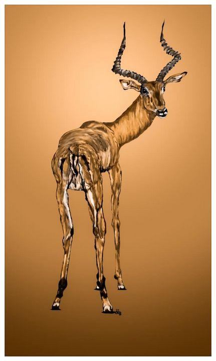 Untame the Impala - Gerard Dourado's Watercolours and Sketches