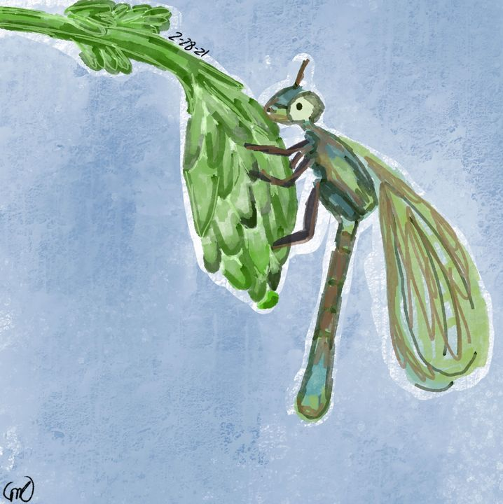 Dragonfly - Soren's life creation's