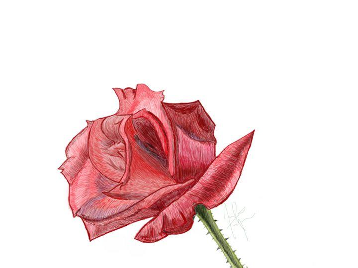 Red Rose - Dog Traynor