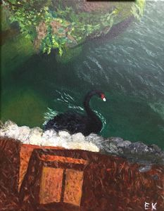 Black Swan - Lizzy's Art