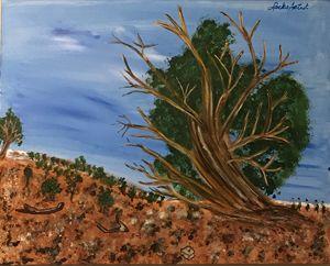 The Great Bristlecone Pine