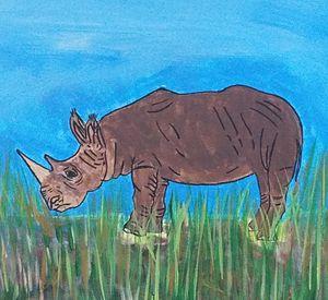 The Endangered Rhino