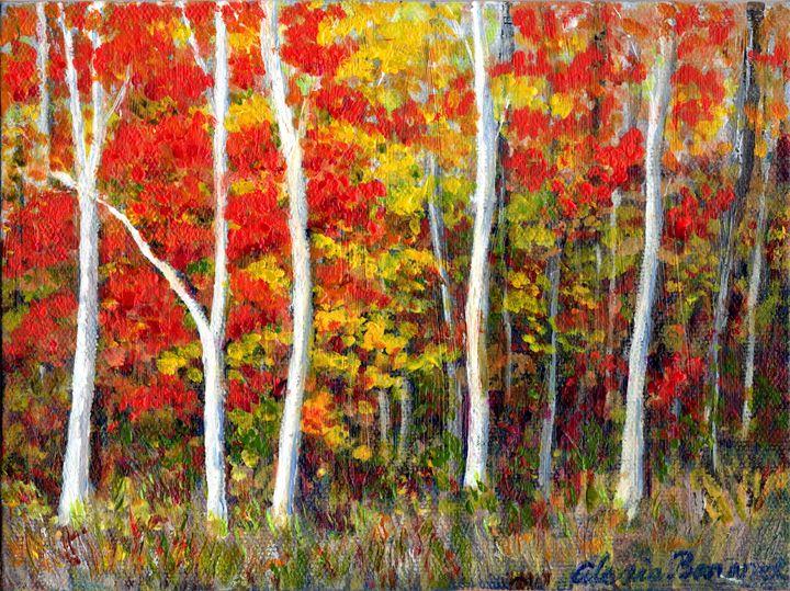 Autumn Color - Alexis Baranek Art