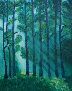 The Light between Trees