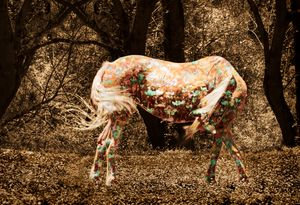 Painted Pony - Whimsical Watercolor Paintings