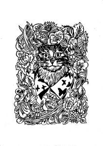 Cat in a shirt
