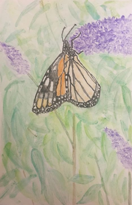 Monarch of the Butterfly Bush - Andy's Art