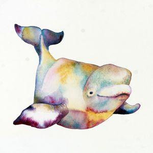 Beluga Whale I