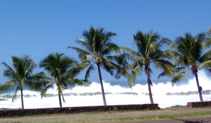 North Shore Hawaii - carlgouveia