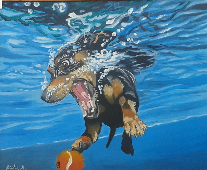 Dog under water - Bashir Midoun