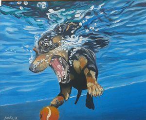 Dog under water - Bashir Midoun
