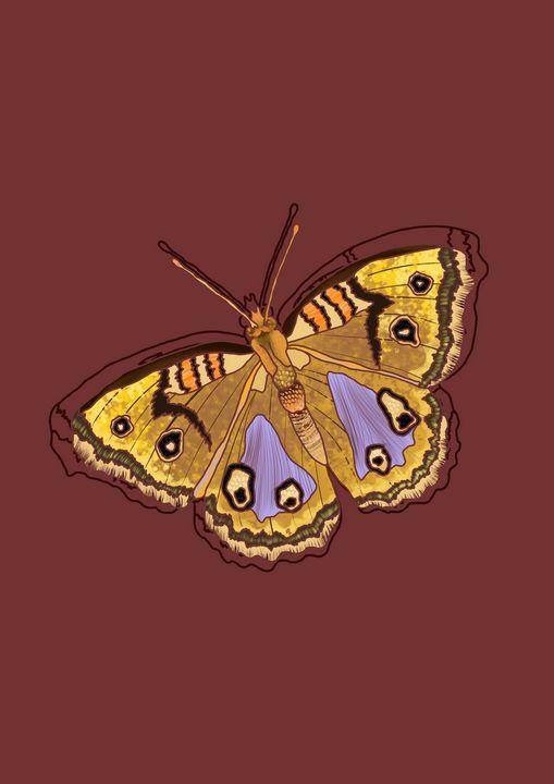 Butterfly - MadeelePrints