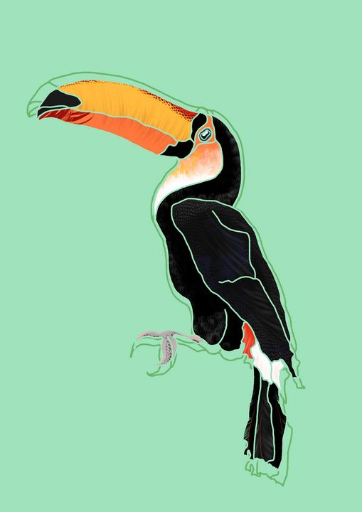 Toucan - MadeelePrints
