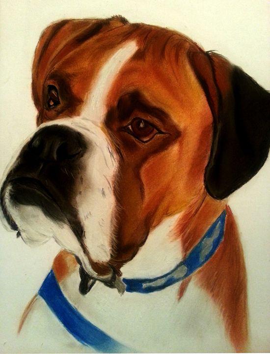 Boxer Dog Portrait - Pet Portraits for Charity