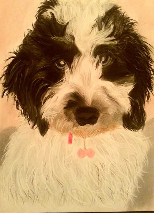 Ruby - Pet Portraits for Charity