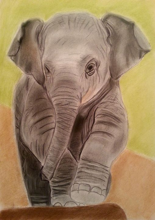 Baby Elephant - Pet Portraits for Charity