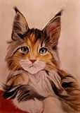 Pastel drawing of Maine Coon