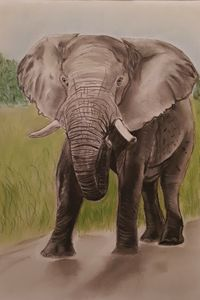 Elephant in Pastels - SOLD