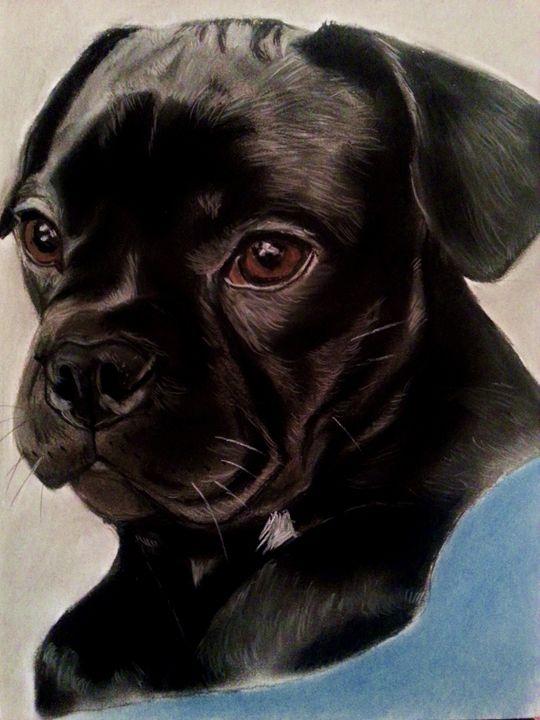 Black Labrador Pup - Pet Portraits for Charity