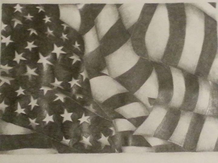 American Flag - The Littau Project