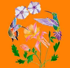 dva kolibříci
