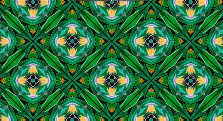 ave de paraiso- kaleidoskop - ChicaLatina