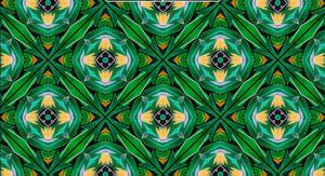 ave de paraiso- kaleidoskop