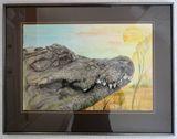 Alligator watercolor