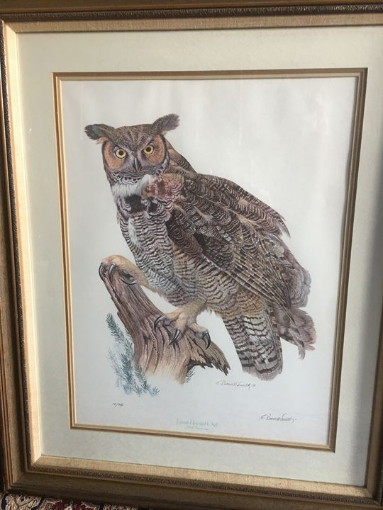 Great Horned Owl by E Darrell Smith - Material Possessions
