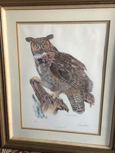 Great Horned Owl by E Darrell Smith