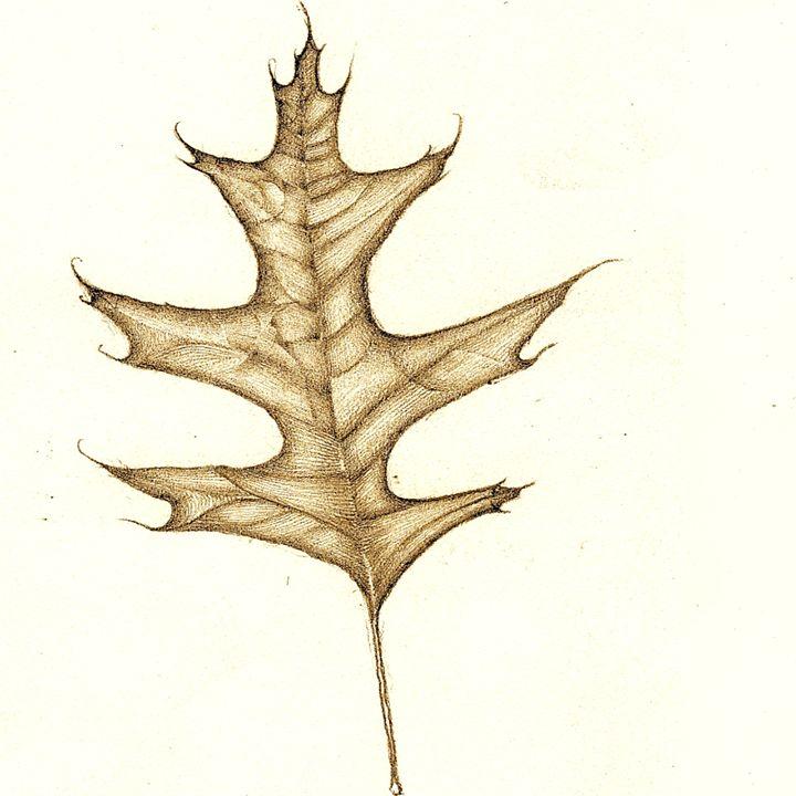Leaf - Antonio Borrero