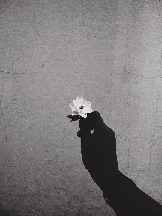 Flower In Hand - ATX Fine Arts