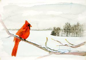 Red Bird Winter