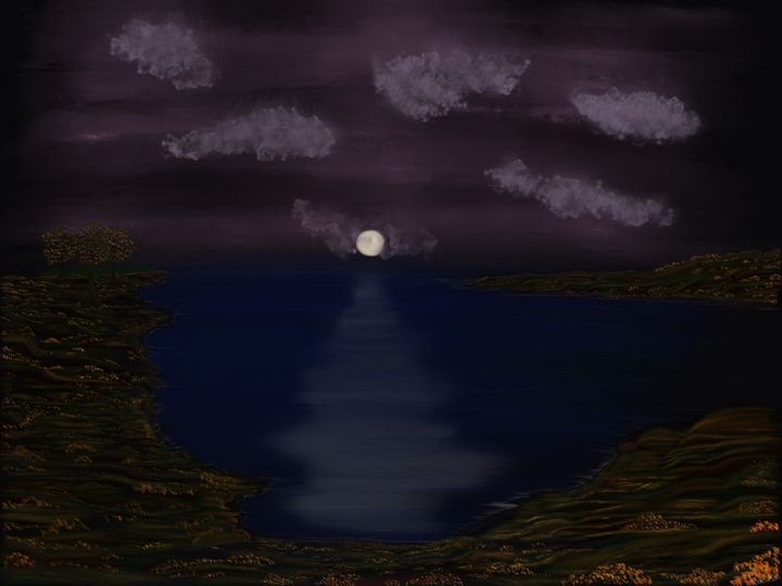 Night over the cove - DragNFly
