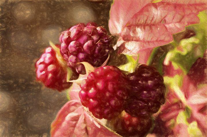 painted rasberries - suzydoodle