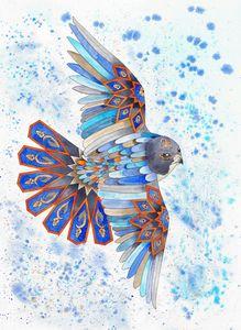 Feather Harmony