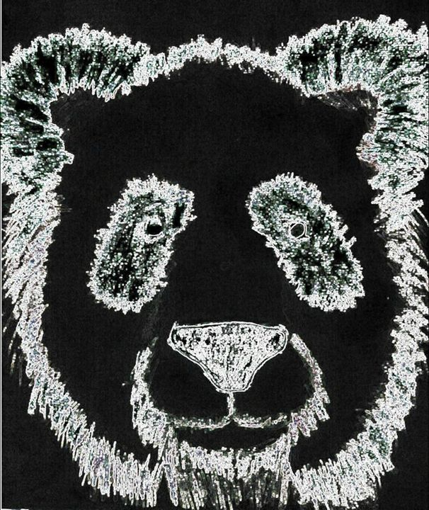 Confused Panda - PACRATES