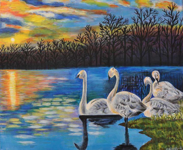SWAN IN WATER - Indira Rajesh
