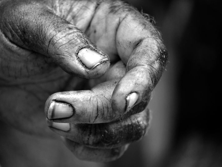 Working Hands - Crys Griffin Photography