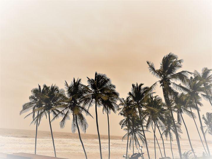 beach - Niya Gowthami