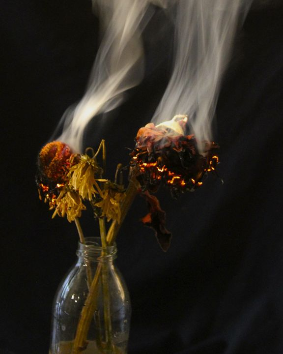 Smoldering Bouquet - Stacey and the Dream