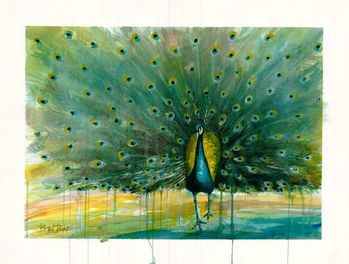 All Eyes - Peacock - Bradley's Art
