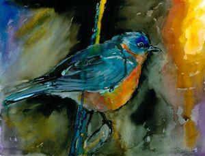 Portrait of a Bluebird - Bradley's Art
