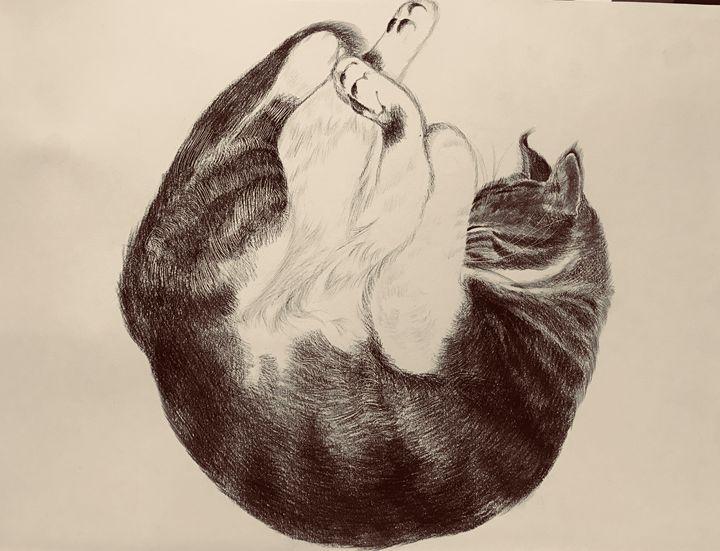 Sleeping Cat - Sleeping Cat