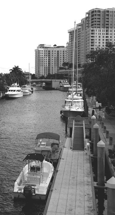 New River East - South Beach, Miami Art
