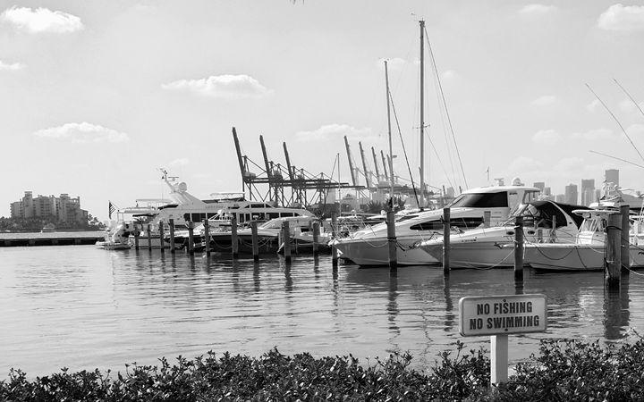 Miami Beach Marina - South Beach, Miami Art